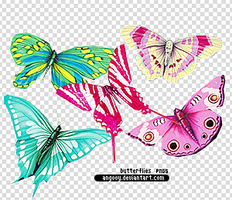 colorful butterflies pngs by ANGOOY