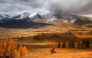 Dsc06583 Altay 13 by Csyyt