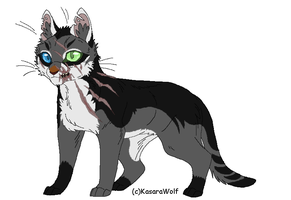 Cat Design Commission 4 by Kasara-Designs