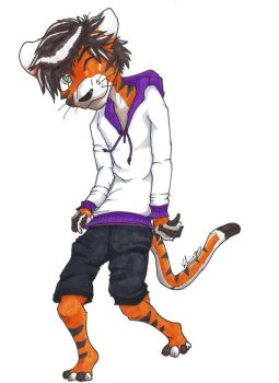 Tee the Tiger by Shiinsuh