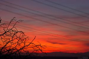Wildfire Sunset 1 by fti7