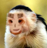 England Monkey by 1stawesome