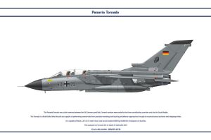Tornado Germany JaboG 33 1 by WS-Clave