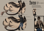 Soren Reference Sheet by Tytoquetra