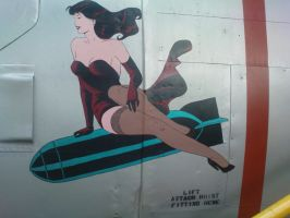 Aircraft pinup by Misieq79