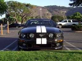 Roush Mustang GT convertible by Partywave