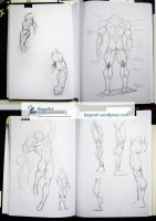 Anatomy Studies by bgo80
