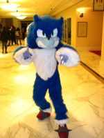 Sonic the Werehog by AdimaLullaby
