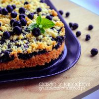 wild blueberry cake by Pokakulka