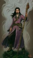 Owen the Mage II by NickRoblesArt