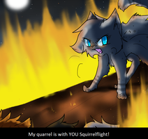 My quarrel is with you! -Fake Screenshot- by pichuspokeball