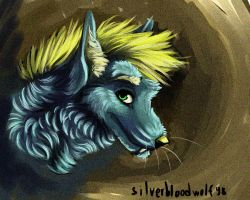 SAI portrait-Fennick by Silverbloodwolf98