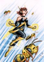 the wasp by Schiraki