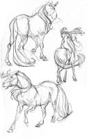 horse sketches by davidsdoodles