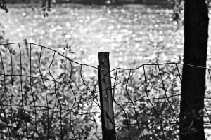 Fenced Off by WickedOwl514