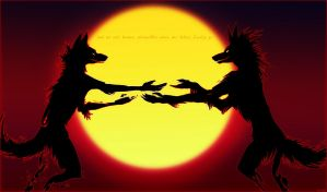 Silhouettes. by vivadawolf
