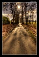 Nature's Perspective by CanvasOfLight