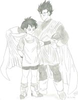 Videl and Gohan by NewJillValentine88
