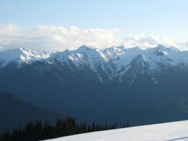Hurricane Ridge by kzinrret