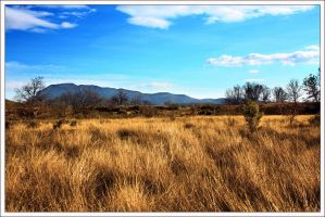 CountrySide View by WindDesert