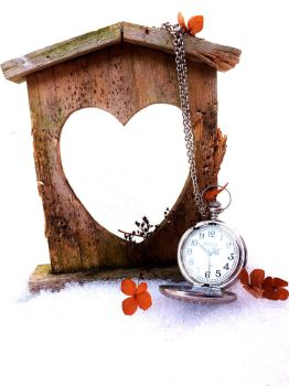 Love knows no time by Denwyn