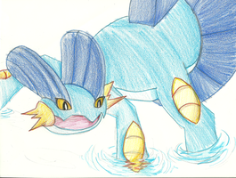 Cheese the Swampert by cdla