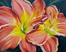 Improved Pink Daylily II by TernFeather