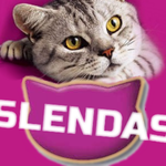 Slendas Cat Food V.2 by oldschooI