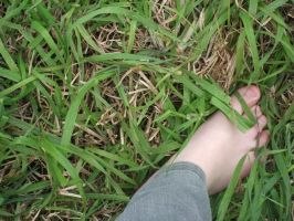 grass foot by emarzee