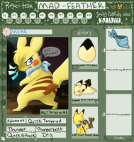 PMD-Explorers App-Team: MAD-FEATHER by YukiKitty