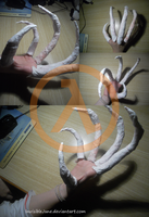WIP - Headcrab zombie hand (HL) by InvisibleJune
