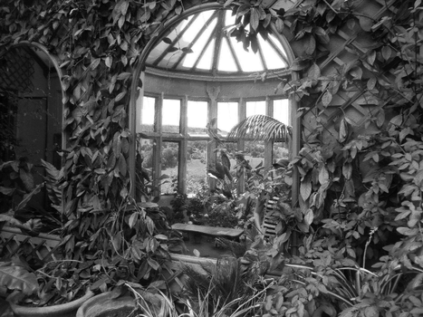 The Conservatory by Ian-Parberry