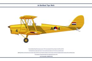 Tiger Moth Netherlands 1 by WS-Clave