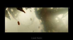 Liquid Forest 12 by liquidforests