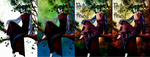 Count D colored by kanogt
