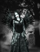 Black Angel by crilleb50