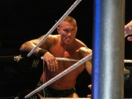 Randy Orton Champaign 2-9-13 by rkogirl1