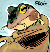 Frog by BBH