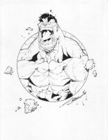 HULK 2 Circle Series INKED by StevenSanchez