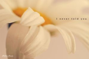 I never told you by phferreira
