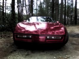 1984 Corvette by NumbingthePain