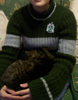 Hand Knitted Slytherin Quidditch Jumper by GalleyArts