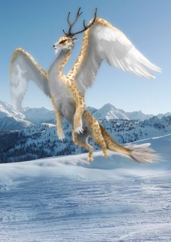 Snow Dragon by weeredfrog