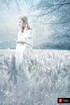 The Snow Queen by teMan