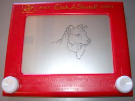 EtchaSketch-PetPortrait-Scully by jivu