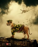 The Tiger's Command ! by ViniciusCarbonera