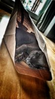 How to buy cat in the bag by vdf