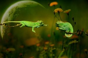 first love by beyzayildirim77