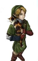 Link and a cat by shorty-antics-27