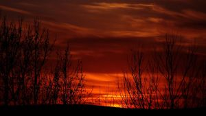 The Red Sky.. by Stegal